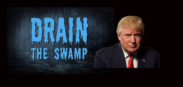 Image result for trump drains the swamp